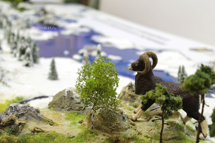 Mountain animal on the model