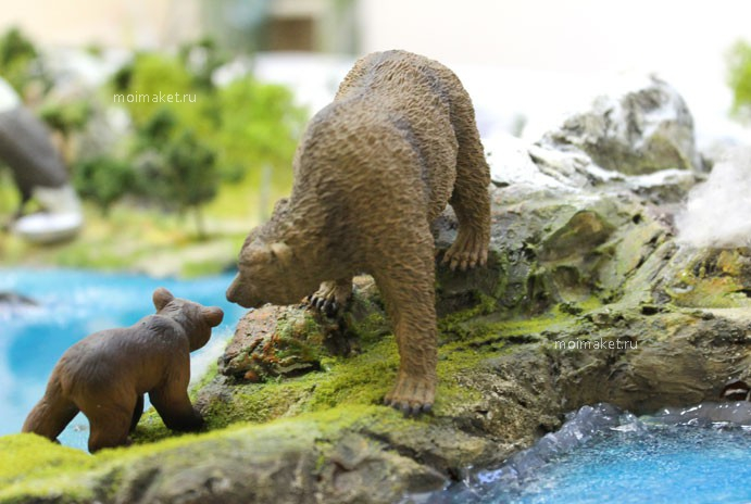 Brown bears on the model